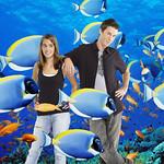 Fish 0056